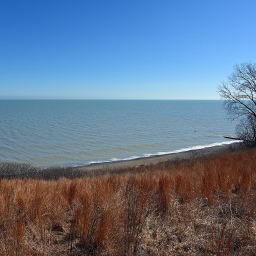 Walk with a Naturalist: Fort Sheridan